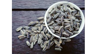 Graines de tournesol: nutrition, bienfaits pour la santé et la meilleure façon de les avoir